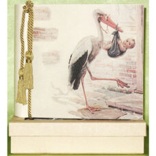 New Stork Terra Traditions Photo Album