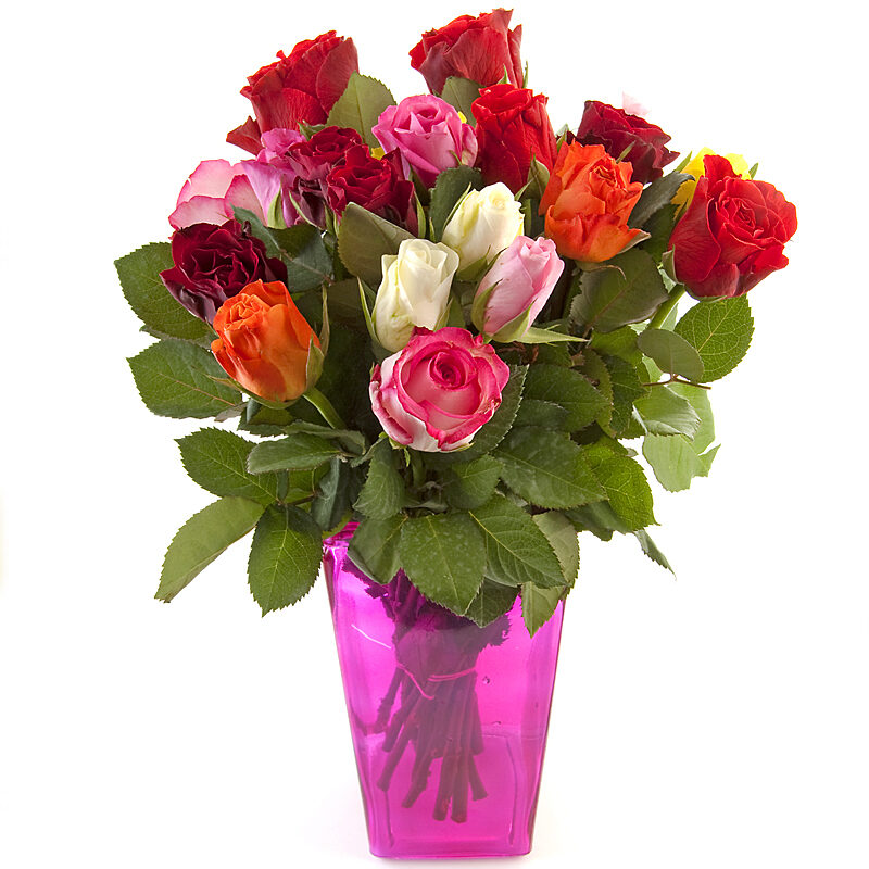 Colorful Bouquet of Sweet Roses - Delivery in Ontario