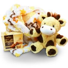 Plush animal and blanket gift set