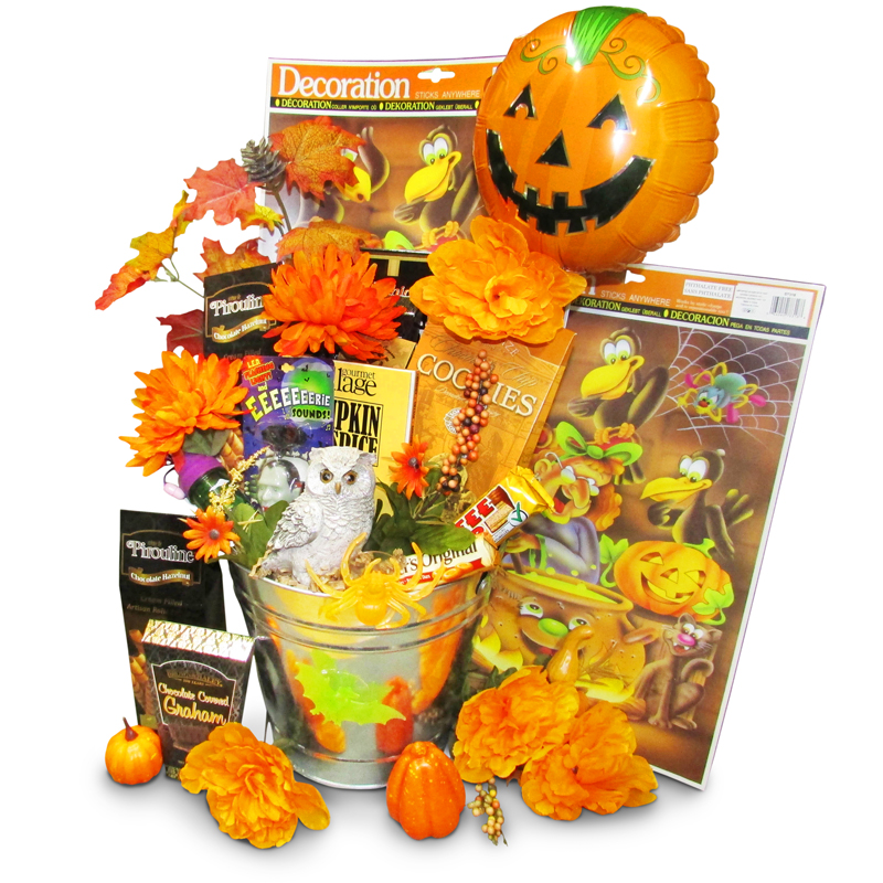 Halloween Occasion