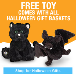 Halloween Gift Baskets, with treats and Free Toy