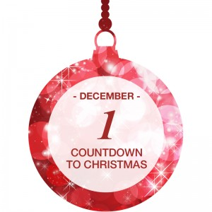 Countdown to Christmas A Cozy Christmas gift basket