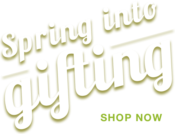 Spring into gifting, Easter gift baskets filled with chocolate treats, gourmet foods, toys and more!