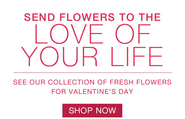 Fresh Flowers Bouquet for Valentine's Day, Flower collection, rose, red rose, One Dozen Long Stemmed Red Roses, two dozen roses, cupid's creation, Bouquet with Red Roses