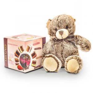 Bear with Specialty Chocolates